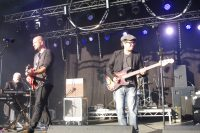 Animals Watchet Festival 2016